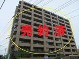 宮崎市 中古マンション サーパス清水   3LDK  9F 築11年 南向き 高層階 日当眺望良好 ペット可 市内中心部 高利便性