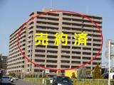宮崎市  中古マンション サーパスシティ宮崎駅前 2,080万円 南向き 3LDK 5F 日当良好 リフォーム渡し