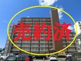 宮崎市  中古マンション  マンションリヴレ 850万円 4LDK 10F  南向き オール電化 ペット可 日当眺望良好 空室